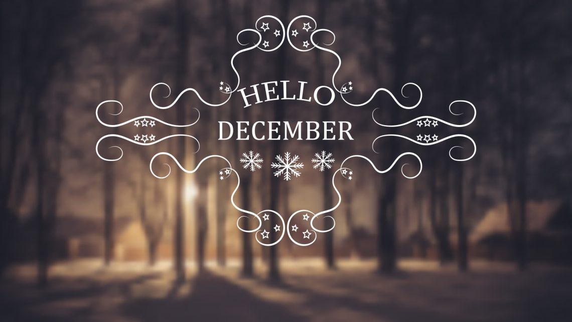 Der Dezember ist da… Zeit für eine Rückschau